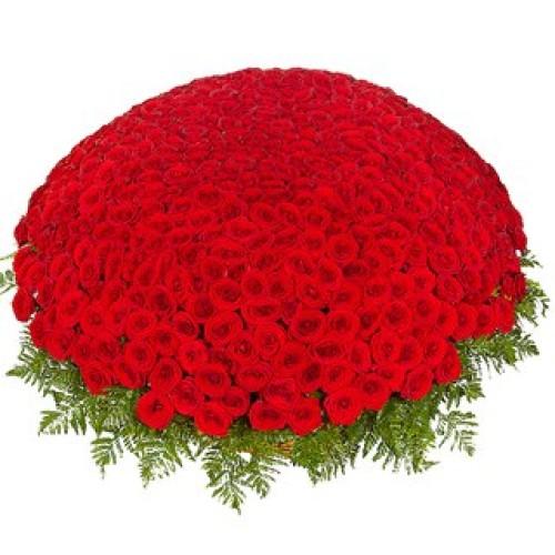 Купить на заказ 301  роза с доставкой в Аксае